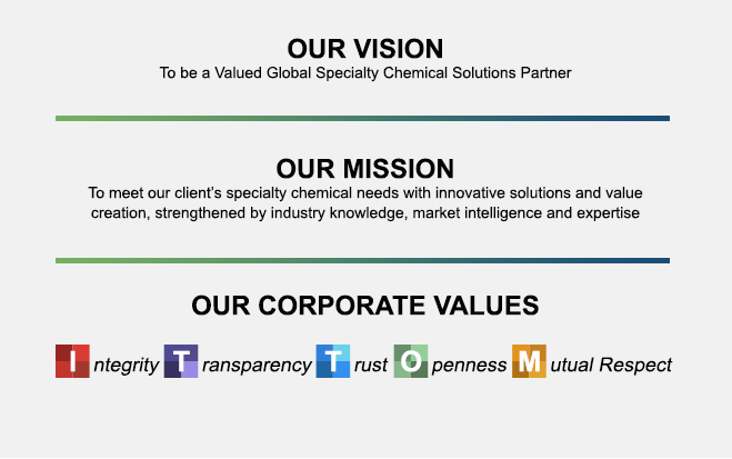 MegaChem Vision, Mission and Corporate Values